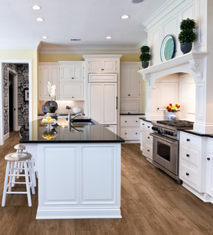 Cabinets fort myers fl for Kitchen cabinets fort myers